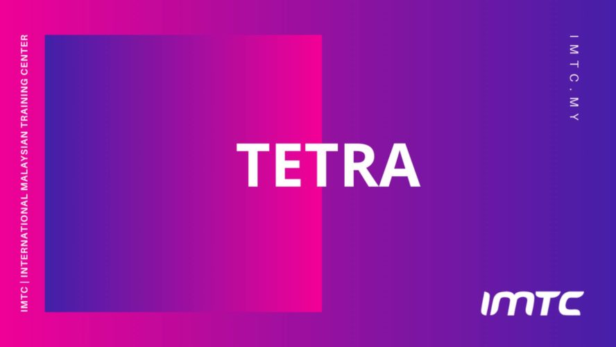 TETRA Air Interface