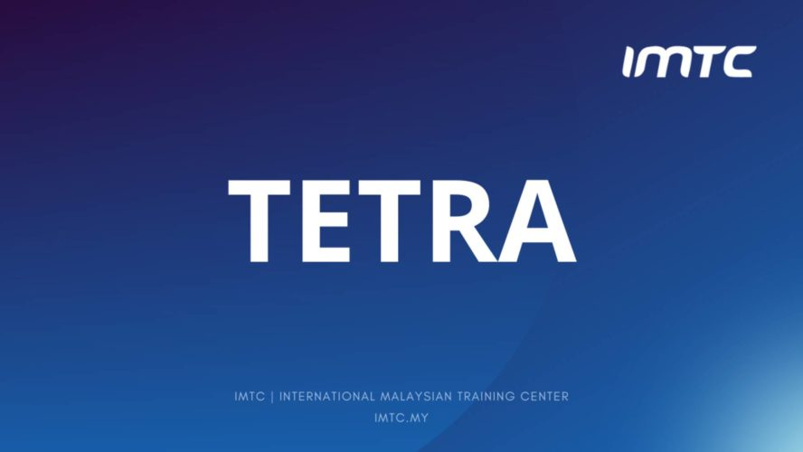 TETRA System Design and Security